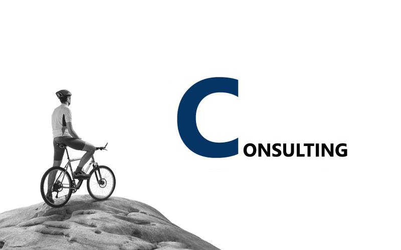 consulting_home